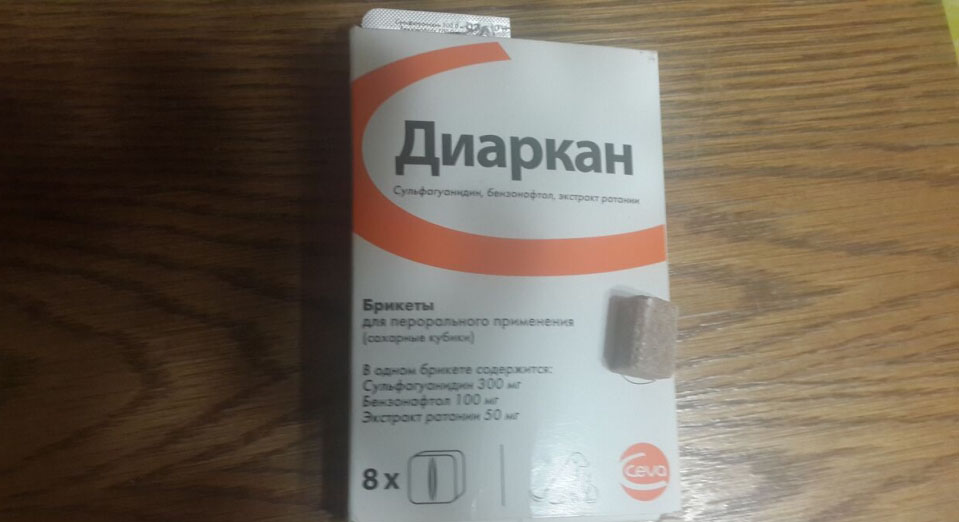 https://kotofan.ru/wp-content/uploads/image-25.png