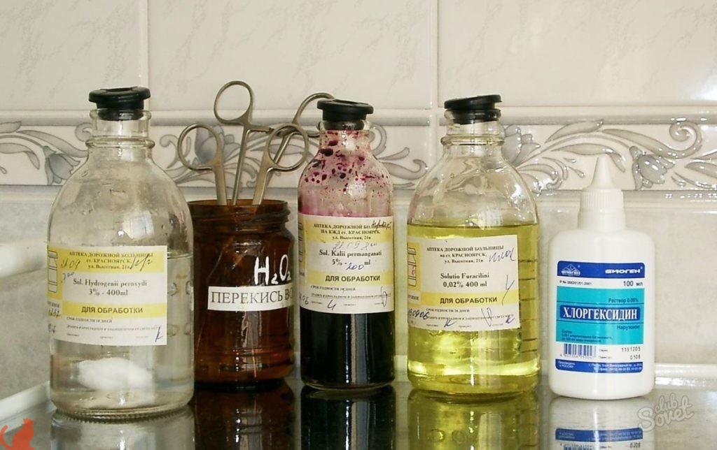 Использование Хлоргексидина для кошек