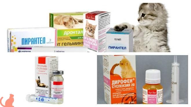 Противобактериальные препараты