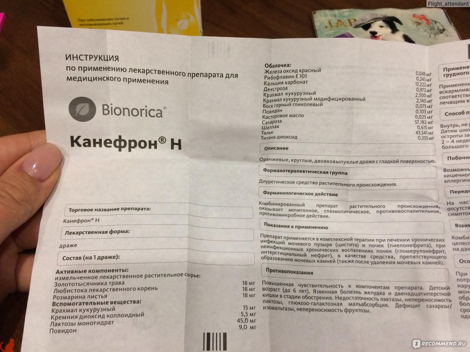 Состав Канефрона