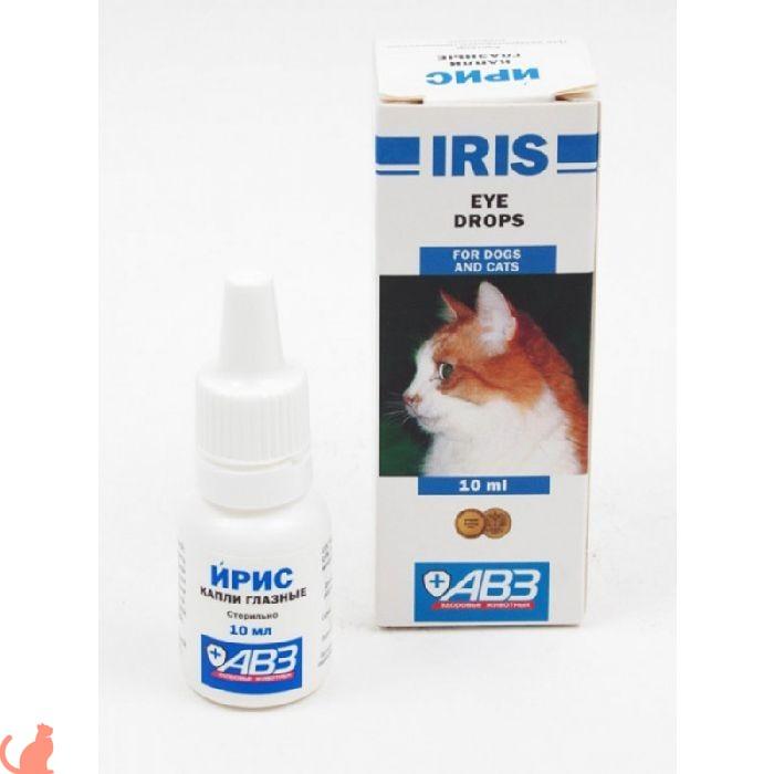 Обзор глазных капель для кошек Ирис